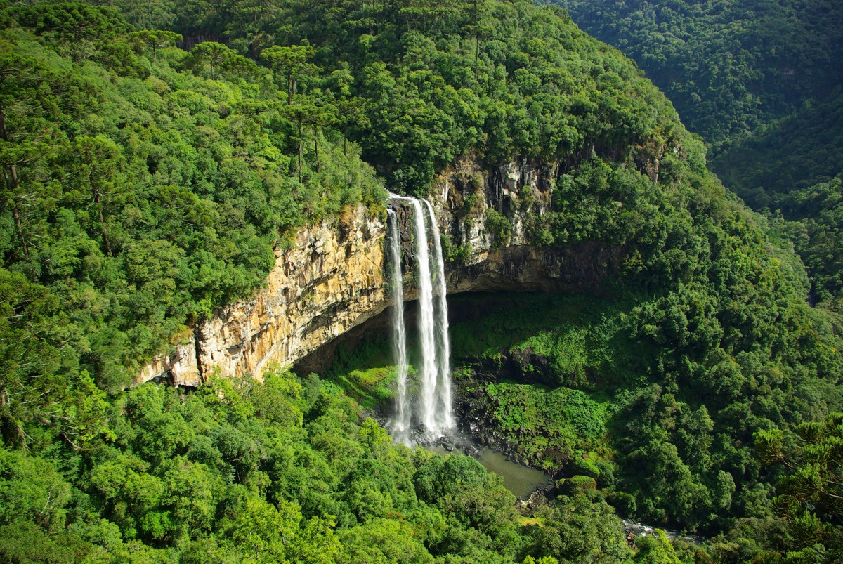 Poza-Zilei-2-Cascada-Caracol-Brazilia-zuf.ro_